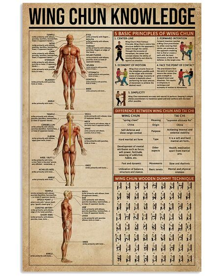 Amazing vintage wing chun knowledge poster