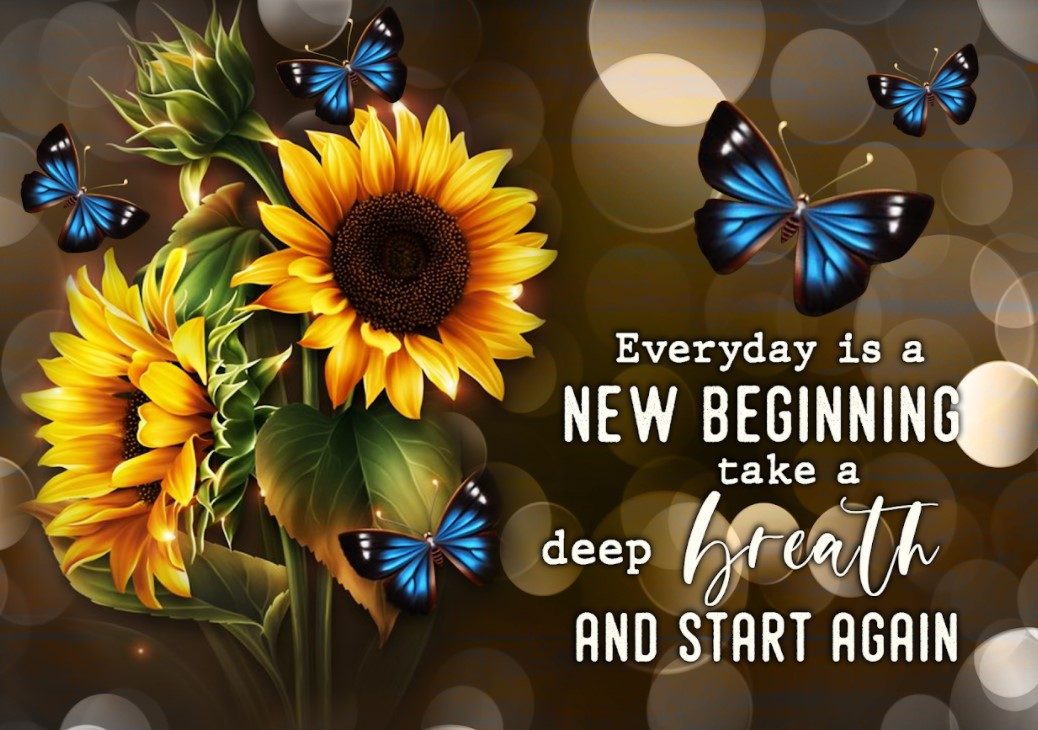 [LIMITED] Poster Sunflower Butterfly Everyday is a new beginning take a deep breath and start again