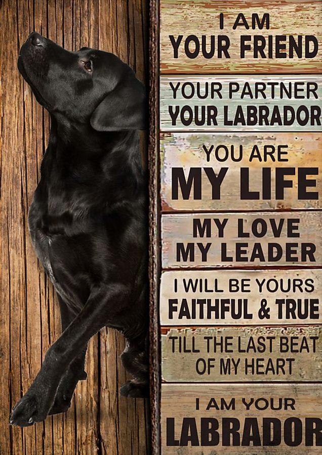 Labrador I am your friend poster