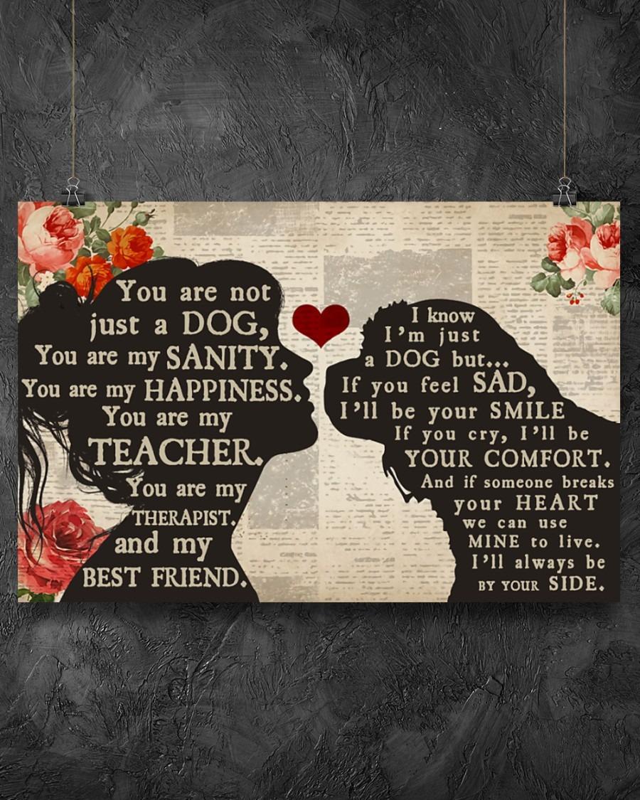 [LIMITED] Poster Cavalier dog girl therapist best friend