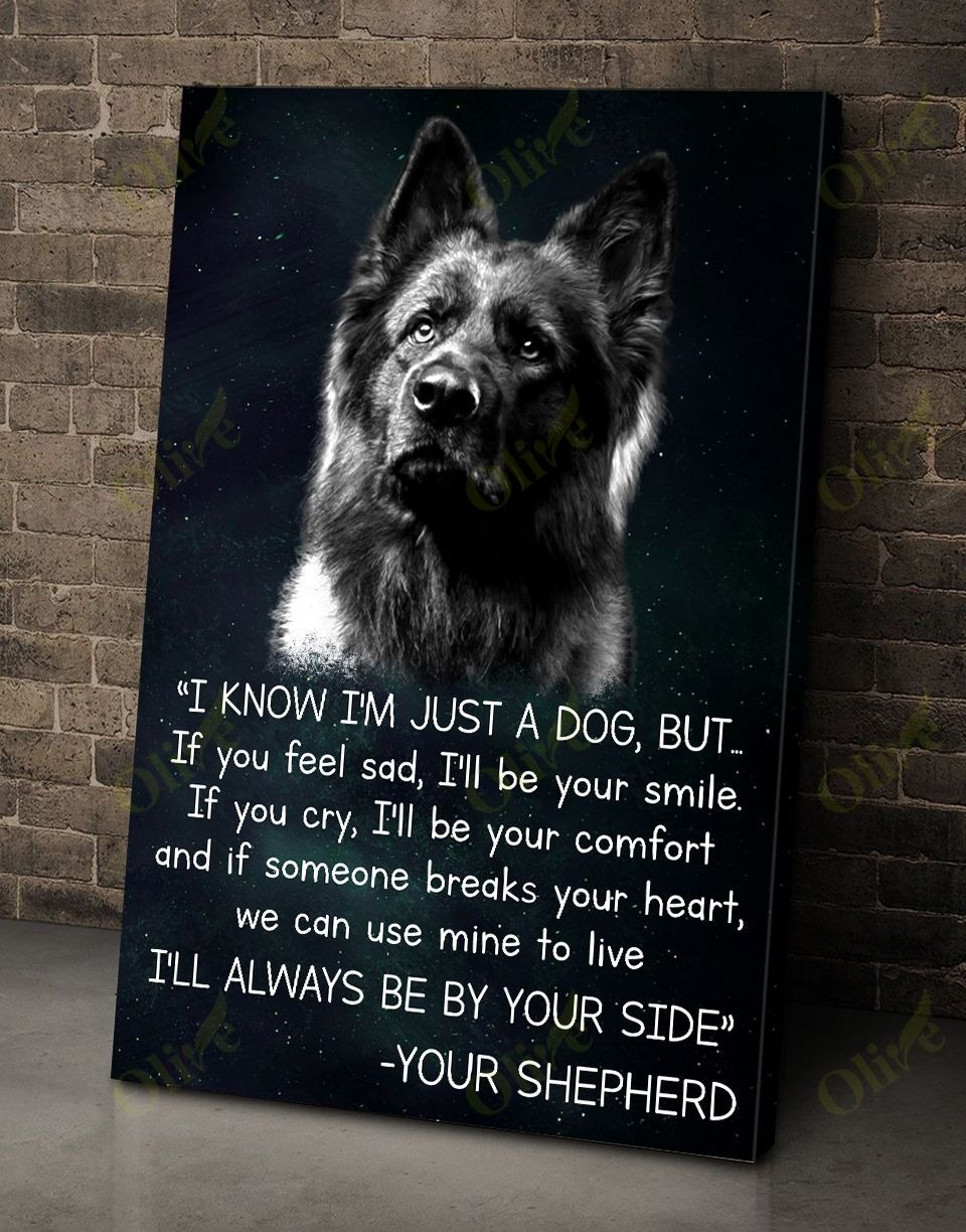 [LIMITED] Poster German shepherd I'm know I'm just a dog