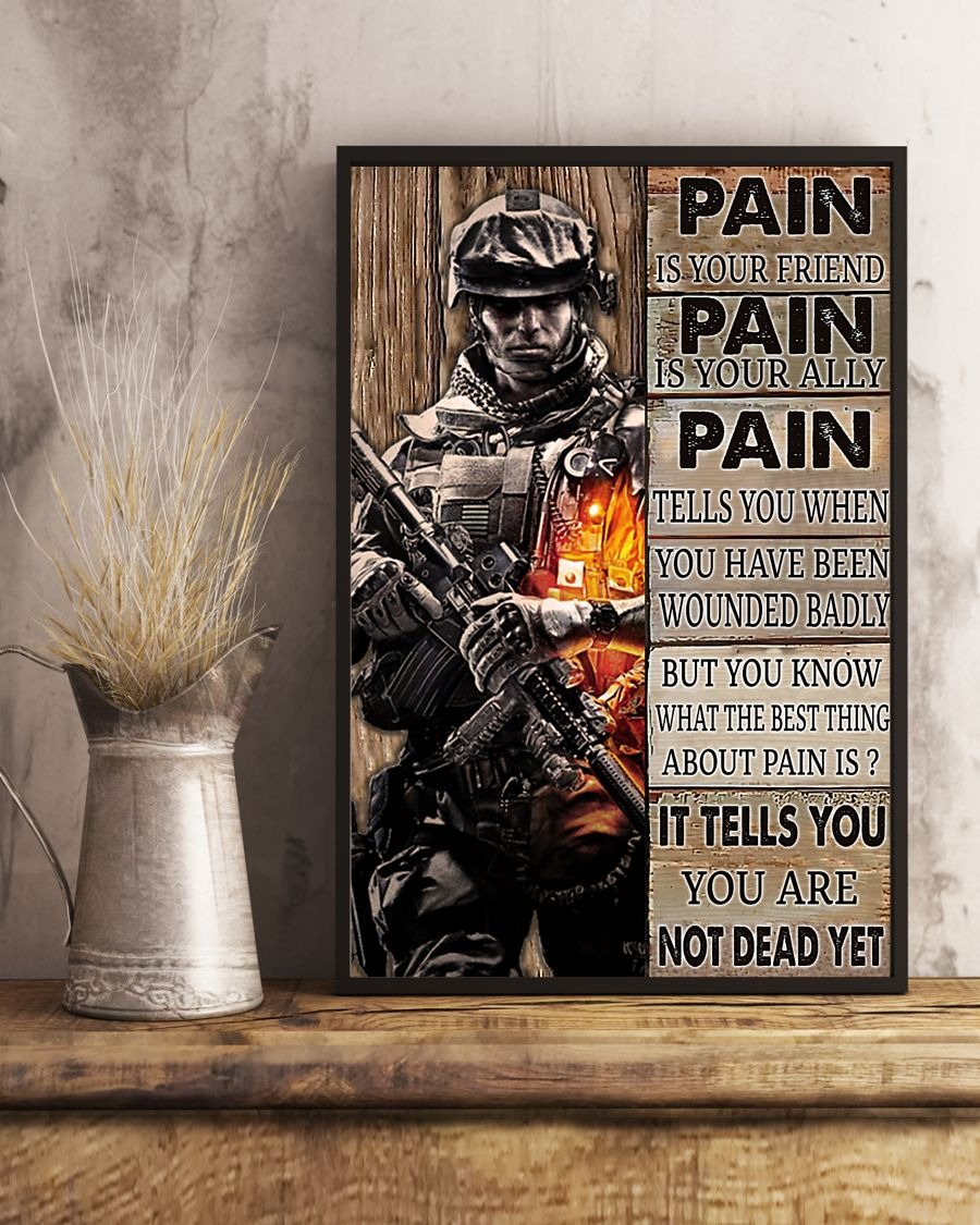 [LIMITED] Poster Veteran pain is your friend pain is your ally