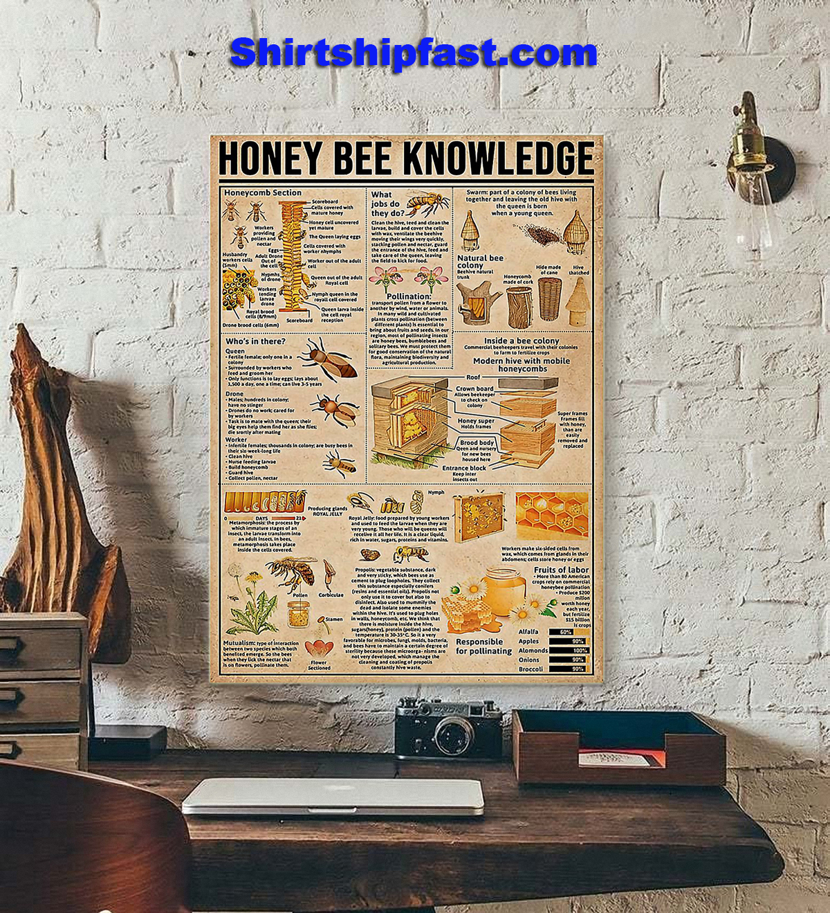 Honey bee knowledge poster