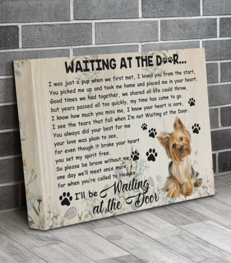 [Hot] Yorkshire Terrier Waiting At The Door Canvas