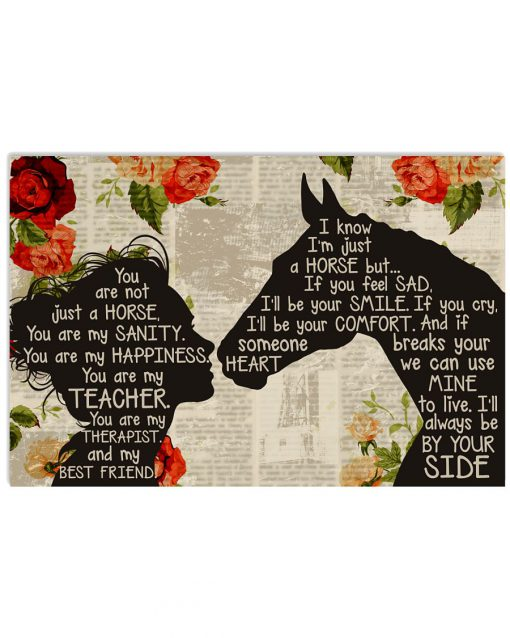 You are not just a horse you are my sanity happiness teacher therapist poster