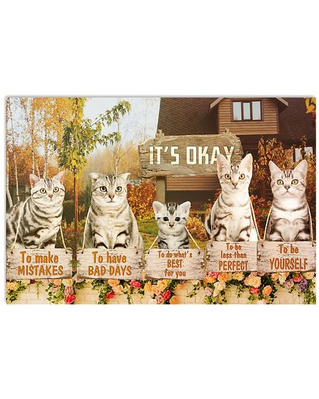 Amazing american cat its okay to make mistakes to have bad days to be yourself poster