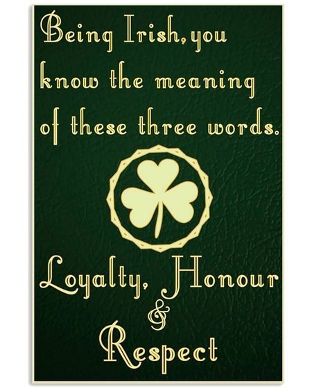Amazing being irish you know the meaning of these words poster