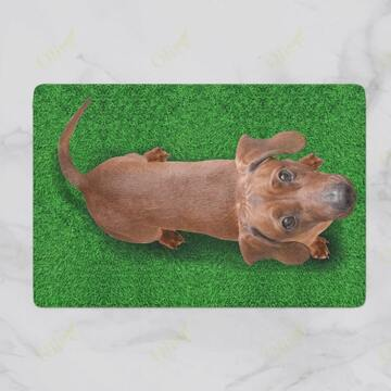 Amazing dog lover dachshund on grass vintage doormat