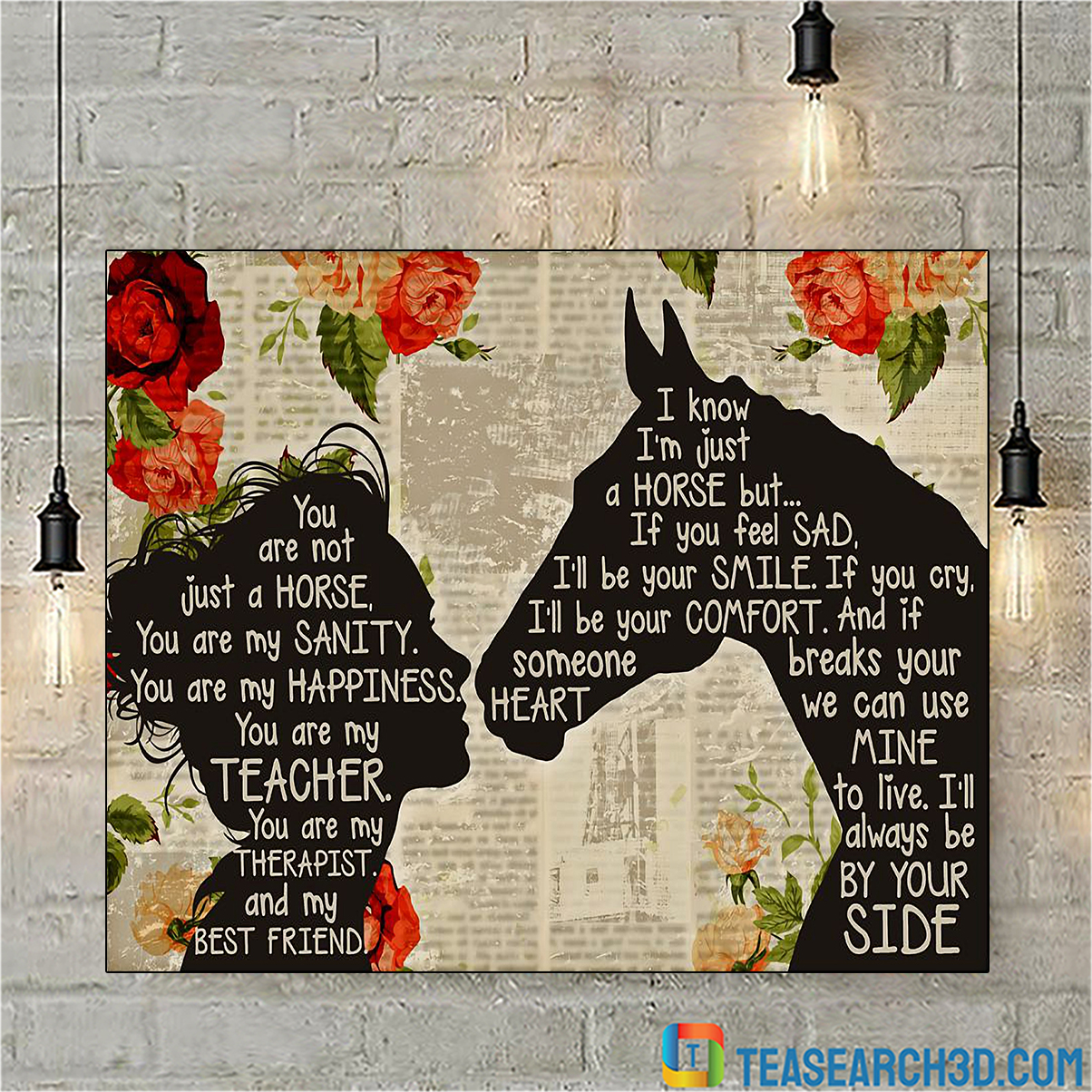 Girl and horse you are not just a horse poster