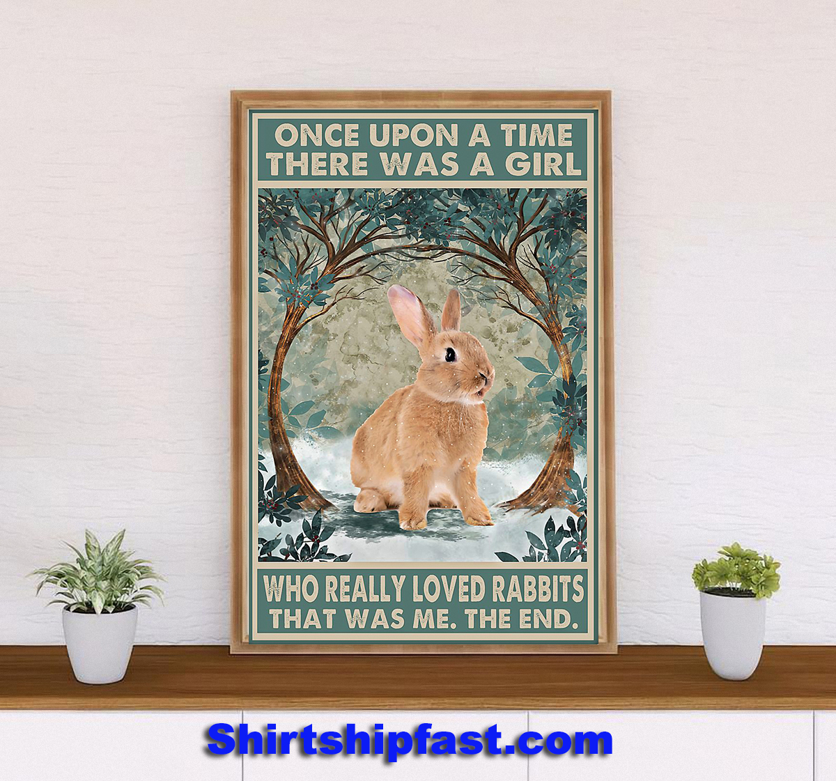 Rabbit Once upon a time poster