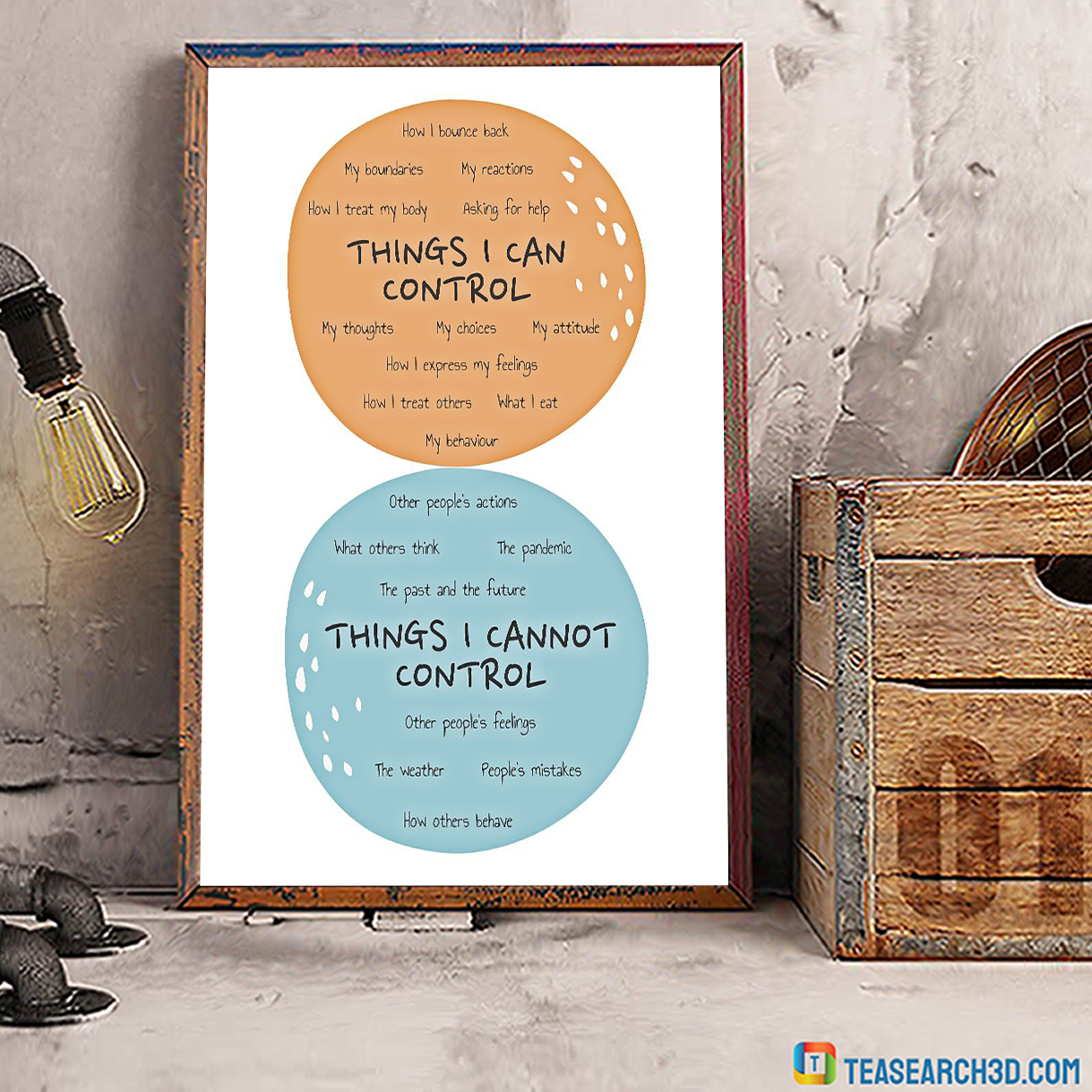 Social Worker things I can control poster