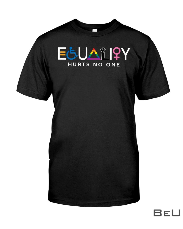 Equality Hurts No One Shirt, hoodie